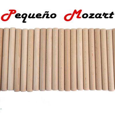 Claves musicales Pequeño Mozart 1 - Instrumento